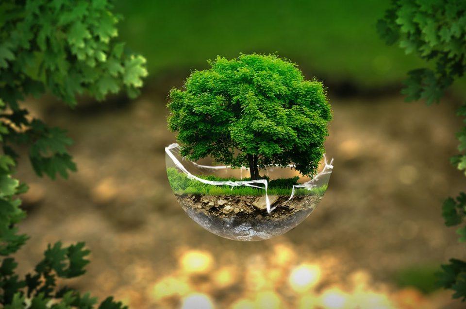#GEN 2020 | Thématique phare : EcoloTech